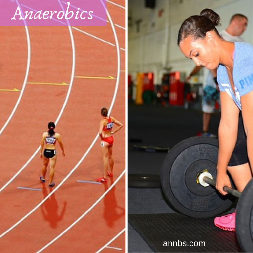 Different forms of Anaerobic