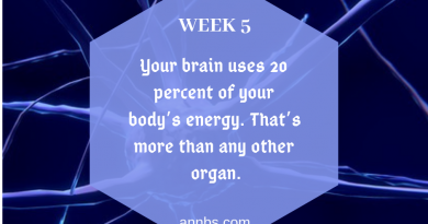 Your brain uses 20 percent of your body's energy. That's more than any other organ.