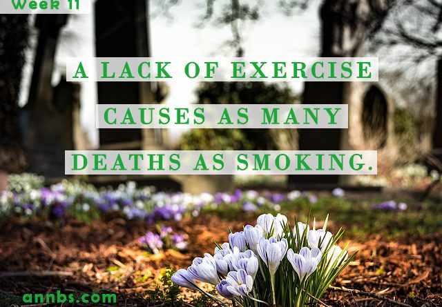 A lack of exercise causes as many deaths as smoking.