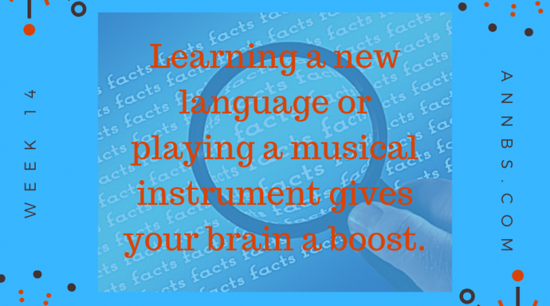 Learning a new language or playing a musical instrument gives your brain a boost.