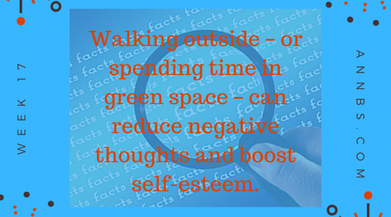 Walking outside – or spending time in green space – can reduce negative thoughts and boost self-esteem.